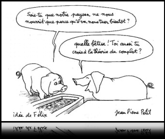 PIGS CONFORTABLES